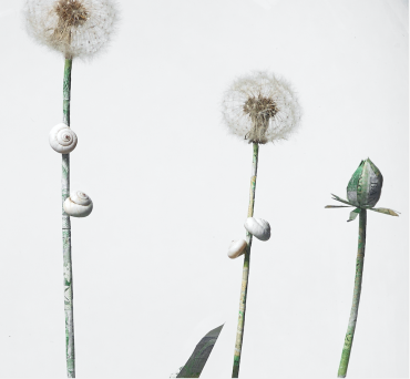 Dandelion plant sculpture made from dandelion seed heads and old English banknotes