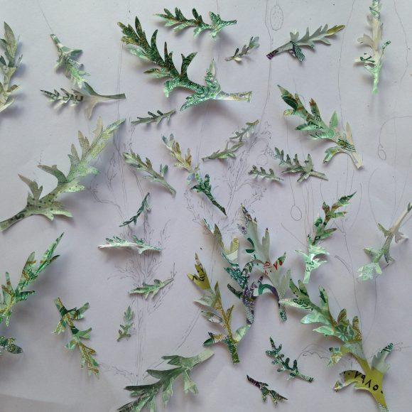 Poppy Leaves