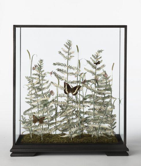 Specimen Pteridium Aquilinum III fern sculpture